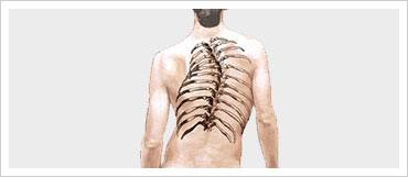 Complex Spine Disorders
